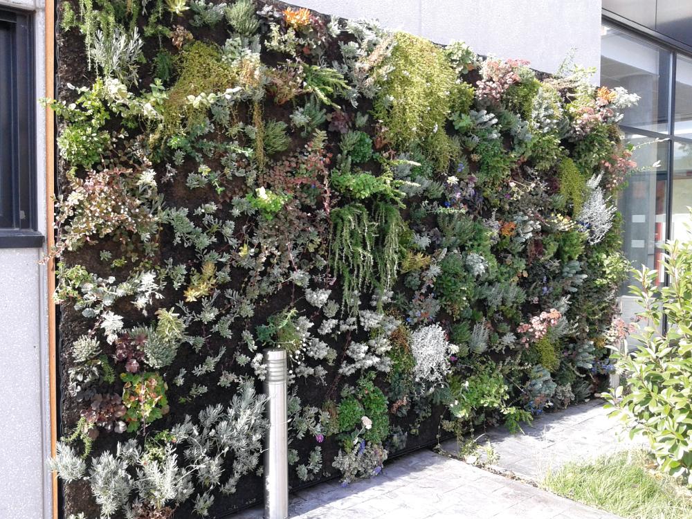 fachada-green-riego-2