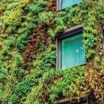 Louvelia Green; la solución técnica más innovadora para fachadas naturales